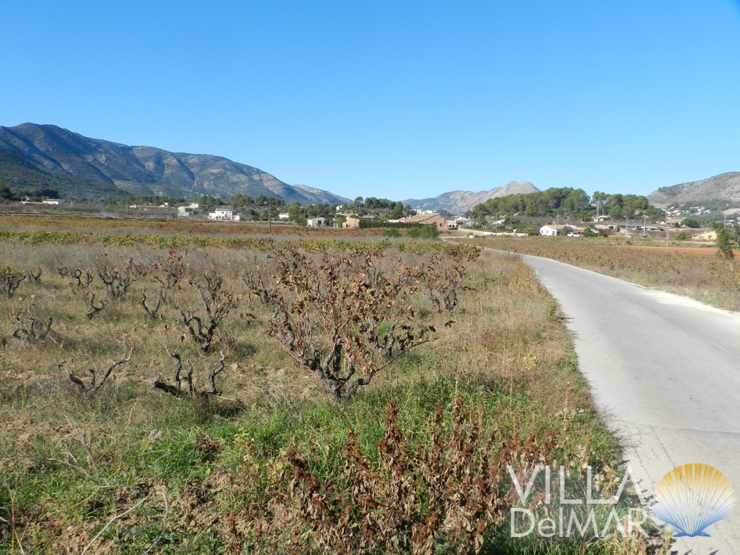 Jalon – Nice flat finca plot close to the village!